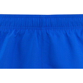 "Nike Swim Solid Lap 5"" Volley Pantaloncini Uomo, hyper royal"